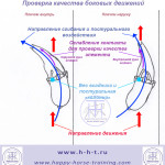diagrams_lateral_work-ru