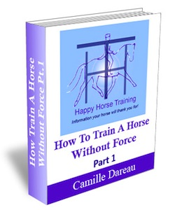 training1_cover3d