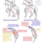 diagrams_bend-ru