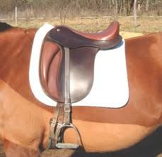 dressage_saddles_strada_brown